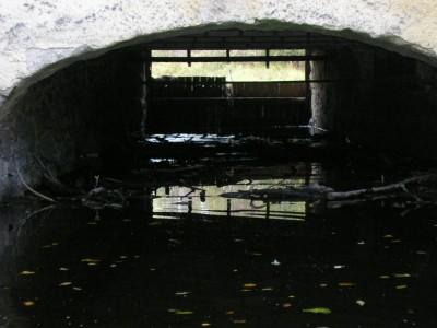 vattenkraft1